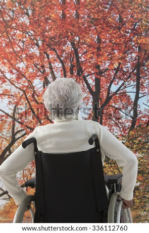 senior disabled man out in a park  - stock photo