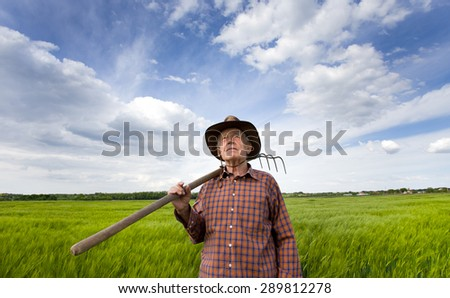 Senior farmer carrying hayfork on shoulder on green barley field in spring time and looking in the sky - stock photo