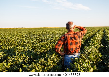 Senior farmer in a field looking into the distance.