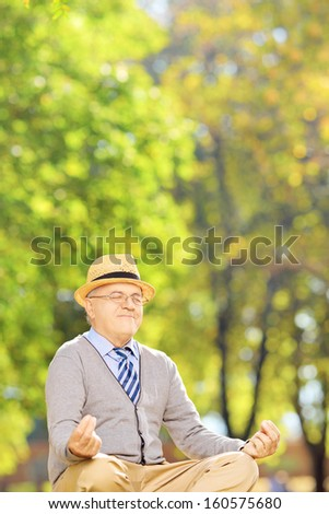 Senior gentleman meditating seated on a green grass in a park - stock photo