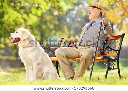 Senior gentleman seated on wooden bench with his dog relaxing in a park - stock photo