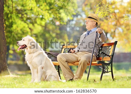 Senior gentleman sitting on wooden bench with his labrador retriever and relaxing in a park - stock photo