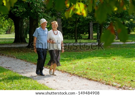 Senior happy couple walking in the park   - stock photo