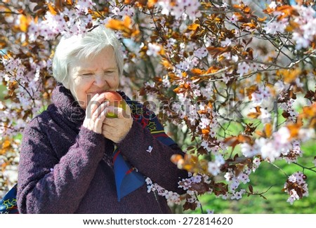 Senior happy woman smiling in garden. She is eating apple. MANY OTHER PHOTOS FROM THIS SERIES IN MY PORTFOLIO.  - stock photo