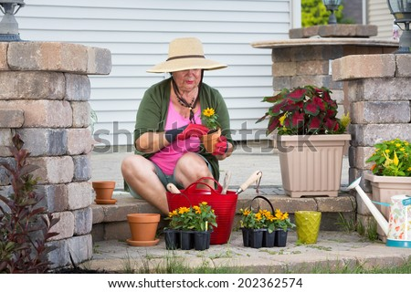 Senior lady sitting on her patio steps potting up plants in flowerpots to decorate the house transplanting new nursery seedlings in her straw sunhat and gardening gloves - stock photo