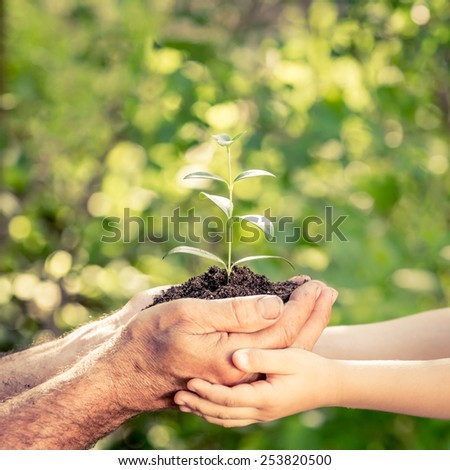 Senior man and baby holding young plant in hands against spring green background. Earth day concept