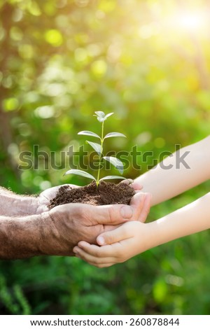 Senior man and baby holding young plant in hands against spring green background. Earth day concept - stock photo