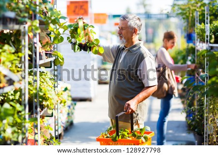 Senior man buying strawberry plants in a gardening centre - stock photo