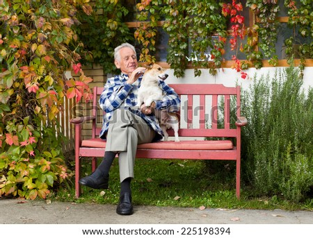 Senior man hugging and playing with dog on bench in courtyard - stock photo