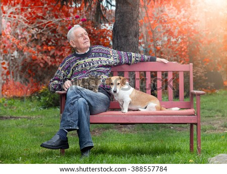 Senior man sitting on bench in the park with cat in the lap and dog beside him - stock photo