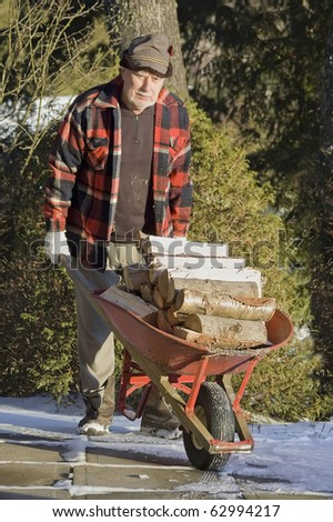 senior man transporting wood for the fireplace with a red wheelbarrow - stock photo