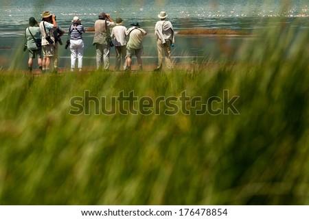 Senior tourists on photo safari in Africa - stock photo