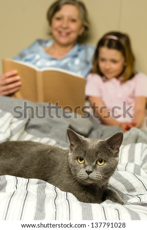 Senior woman and granddaughter reading lying in bed with cat - stock photo