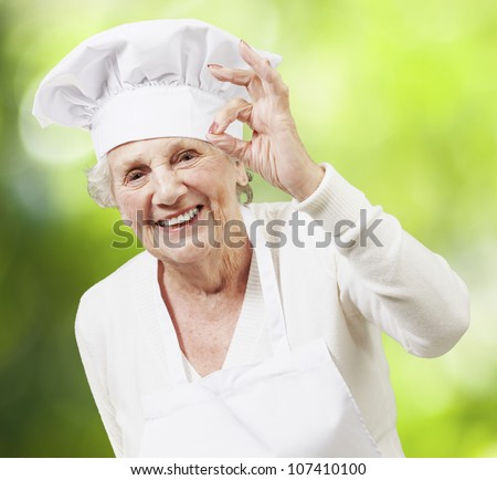senior woman cook doing an excellent symbol against a nature background - stock photo