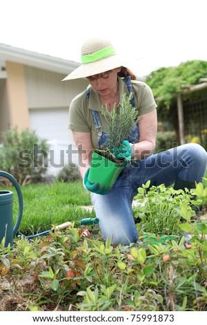 Senior woman gardening in spring time - stock photo