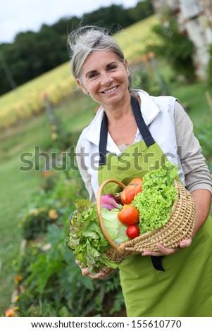 Senior woman holding basket of fresh vegetables - stock photo