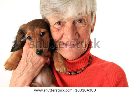 Senior woman holding her new dachshund puppy - stock photo