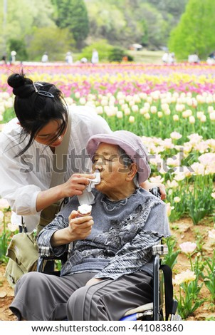 Senior woman in a wheelchair and granddaughter in the flower park