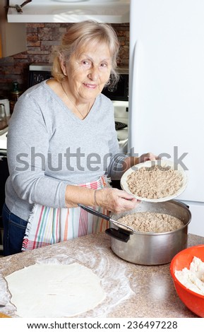 Senior woman or grandma preparing meat pie for the holidays in her kitchen - stock photo