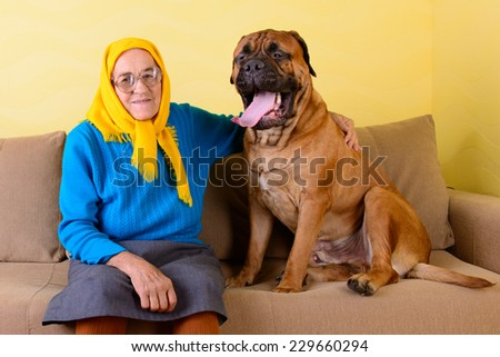 senior woman sitting on the sofa with a big dog - stock photo