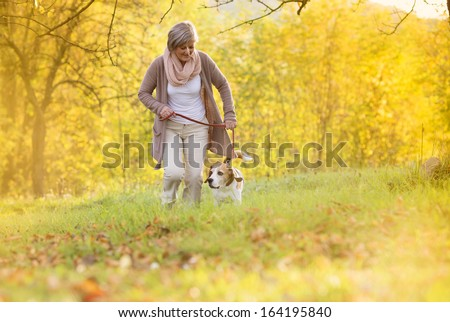 Senior woman walking her beagle dog in countryside - stock photo