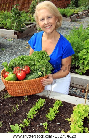 Senior woman with a basket of fresh vegetables. - stock photo