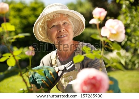 Senior woman with a pruning shears looking at you smiling in her garden. Old woman gardening on a sunny day. - stock photo