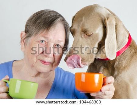 Senior woman with dog drinking  tea - stock photo