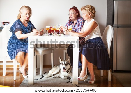 Senior women and cute dog, at home - stock photo
