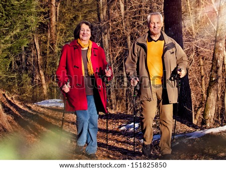 seniors walking in autumn forest / active - stock photo