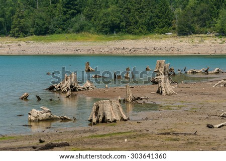 sense of sunny beach point when low water level in summer in mt. rainier area,Wa,usa.