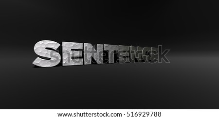 SENTENCE - hammered metal finish text on black studio - 3D rendered royalty free stock photo. This image can be used for an online website banner ad or a print postcard.