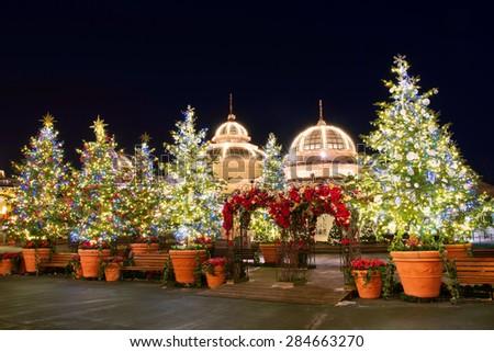 SEOUL, KOREA - DECEMBER 21,2014: Christmas tree lights at ninght in Everland. Photo taken on December 21, 2014 in Seoul, South Korea. - stock photo