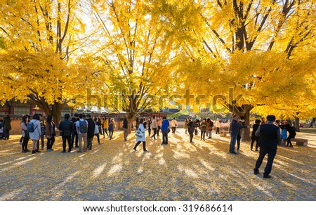SEOUL, KOREA - NOVEMBER 1, 2014: Autumn leaves at gyeongbokgung palace, November 1, 2014 in Seoul, South Korea.