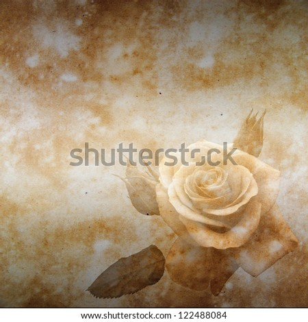 sepia background with rose - stock photo