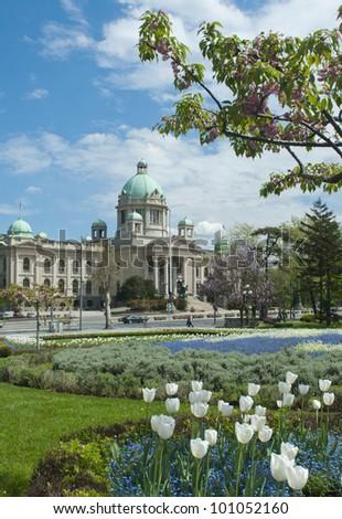 Serbian National Assembly building (Narodna skupstina) with tulips in Belgrade, Serbia  - stock photo