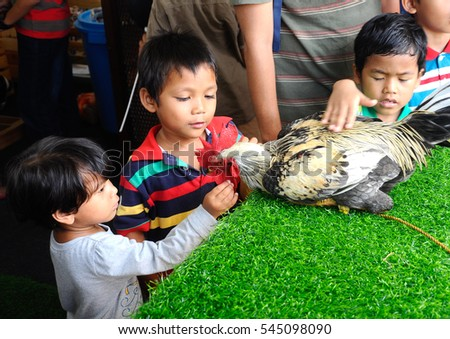 SERDANG, MALAYSIA -DECEMBER 07, 2016: Kids happilyy play with the rooster.