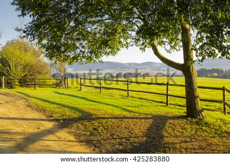 Serene country scene, fence and tree