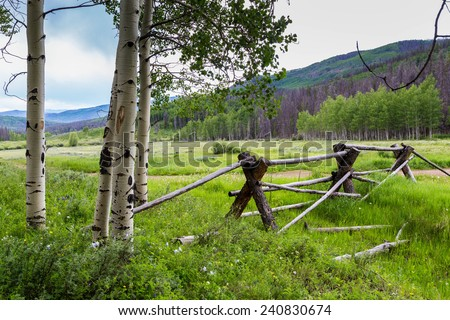 Serene scene of wooden fence in a meadow beside quaking aspens with Colorado mountains in the background - stock photo