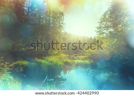 Serenity misty lake - stock photo