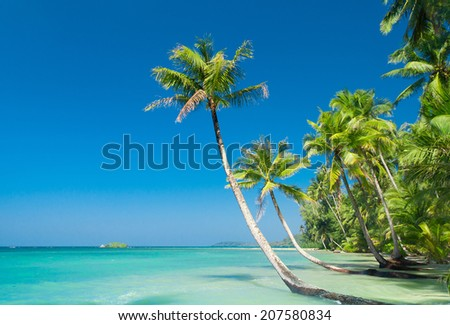 Serenity Shore Relaxation In Peace  - stock photo