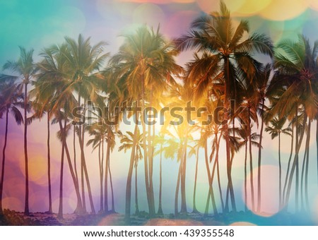 Serenity tropical beach, Instagram filter - stock photo
