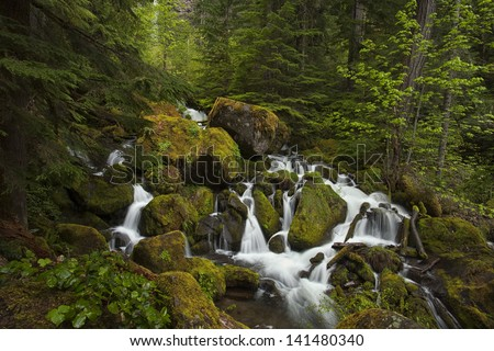 Series of cascades at the base of Oregon's Watson Falls.  The falls itself can be seen shrouded behind some foliage in the background. - stock photo