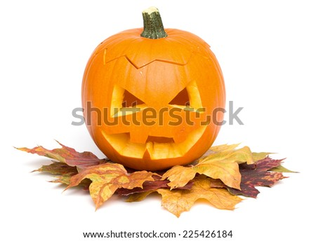 Series of isolated on white Halloween themed pictures - stock photo