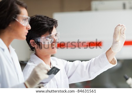Serious science students looking at Petri dish in a laboratory