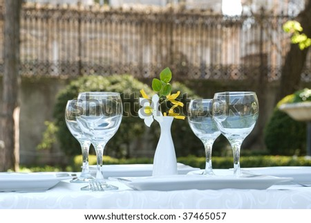 Served table in garden outdoor cafe