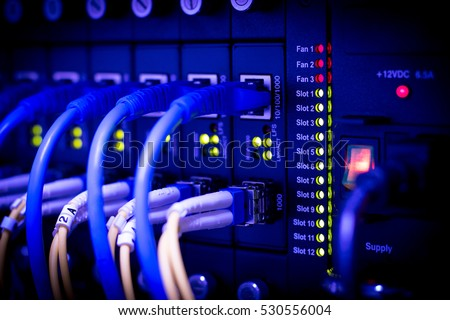 server,Fiber,Network,Fiber Network Server. Network cables installed in the rack.network cables installed in the rack