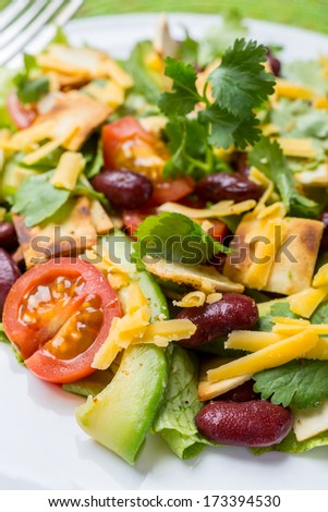 Serving of Mexican Salad with Avocado, Black Beans and Tortilla Croutons - stock photo