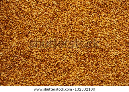 sesame background - stock photo