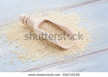 sesame seeds - food and drink - stock photo